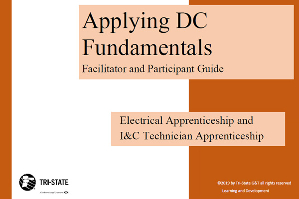 Preview of DC Facilitator & Participant Guide
